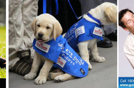 Guide Dogs Victoria– Our fave!