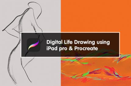 Digital Life Drawing using Procreate at Lamington Drive / Jacky Winter HQ